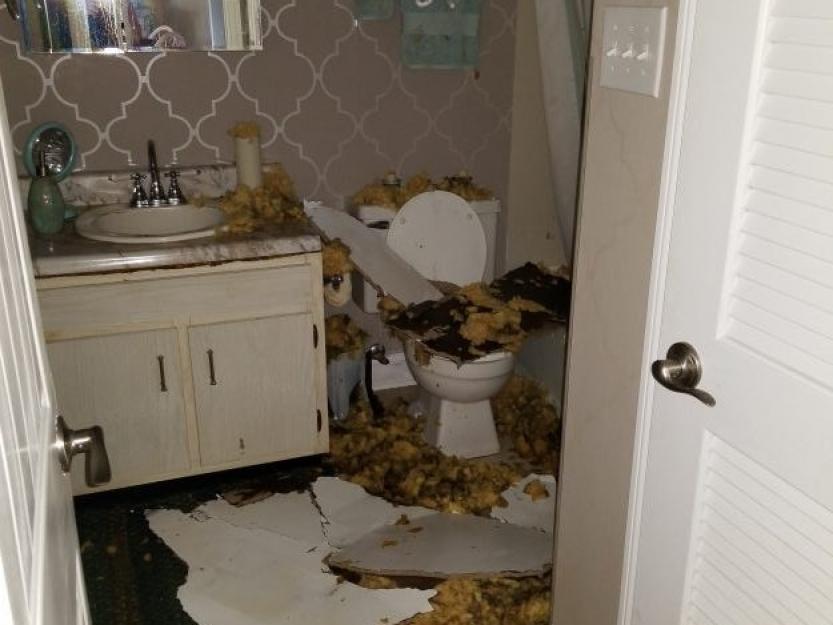 Hurricane-Florence-Damage-8