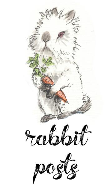 Rabbit Posts