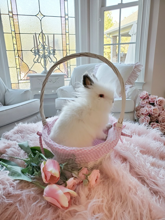 A white rabbit sitting in an Easter basket, surrounded by pink flowers