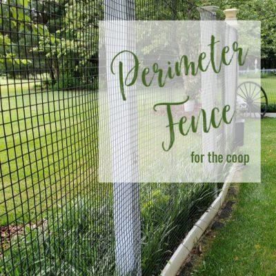 Chicken Coop Perimeter Fence