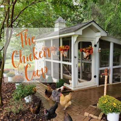 The Chicken Coop at Happy Days Farm